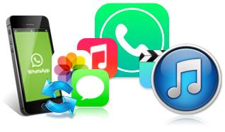iphone whatsapp recovery